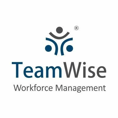 TeamWise logo