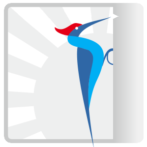 Strikedeck logo