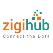 zigihub logo