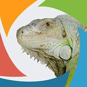 SeoSamba for Wordpress Enterprise logo