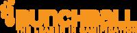 Bunchball Nitro for Salesforce logo