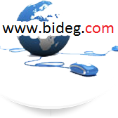 Biideg logo